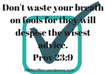 Don't waste your breath on fools for they will despise the wisest advice. Prov 23_9