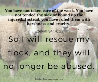 I will rescue my flock, and they will no longer be abused.